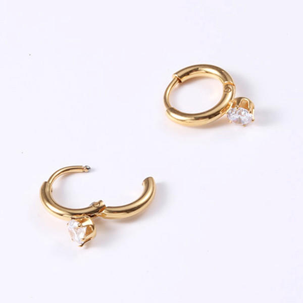 Surgical Stainless Steel Zircon Charm Hoop Earrings